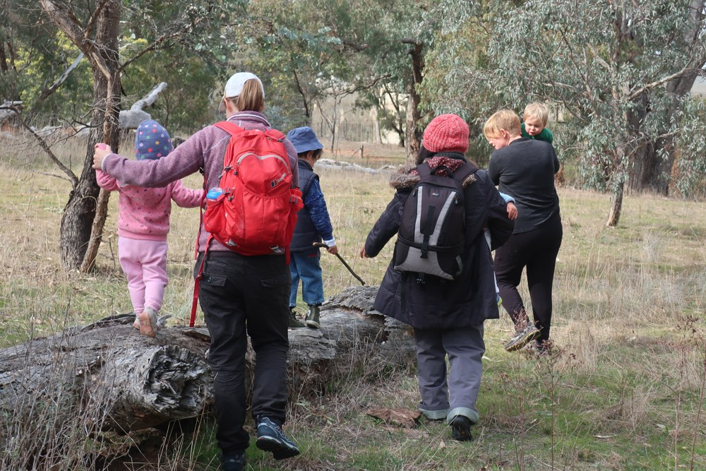 Toddlers Toddle - Mount Majura Reserve