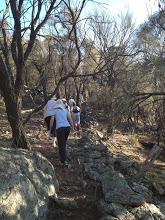 Mt Majura and Dry Stone Wall