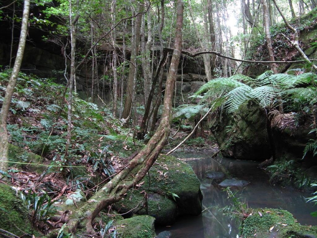 Bundanoon - Buchanans Lookout - Christmas Creek