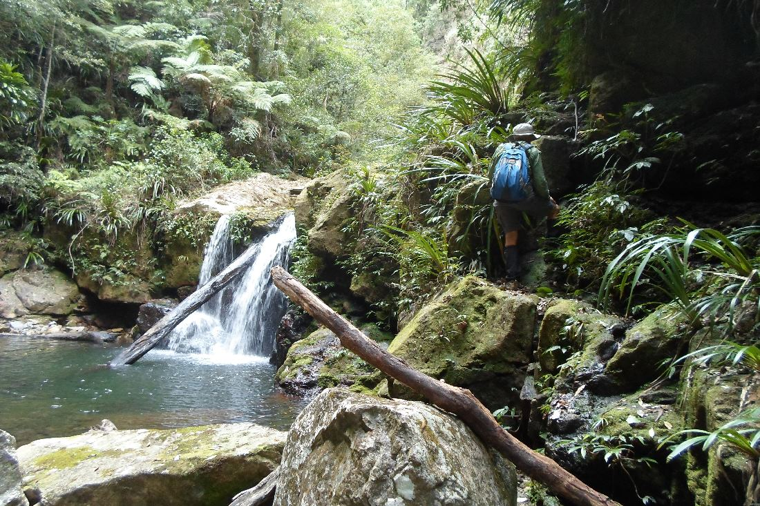 Climbing past a cascade, Coomera Valley