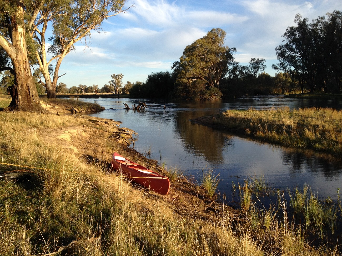 Grassy banks provide easy landings for canoeists, Dights Creek off the Murray