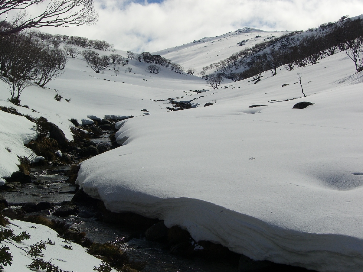 Guthega River in winter