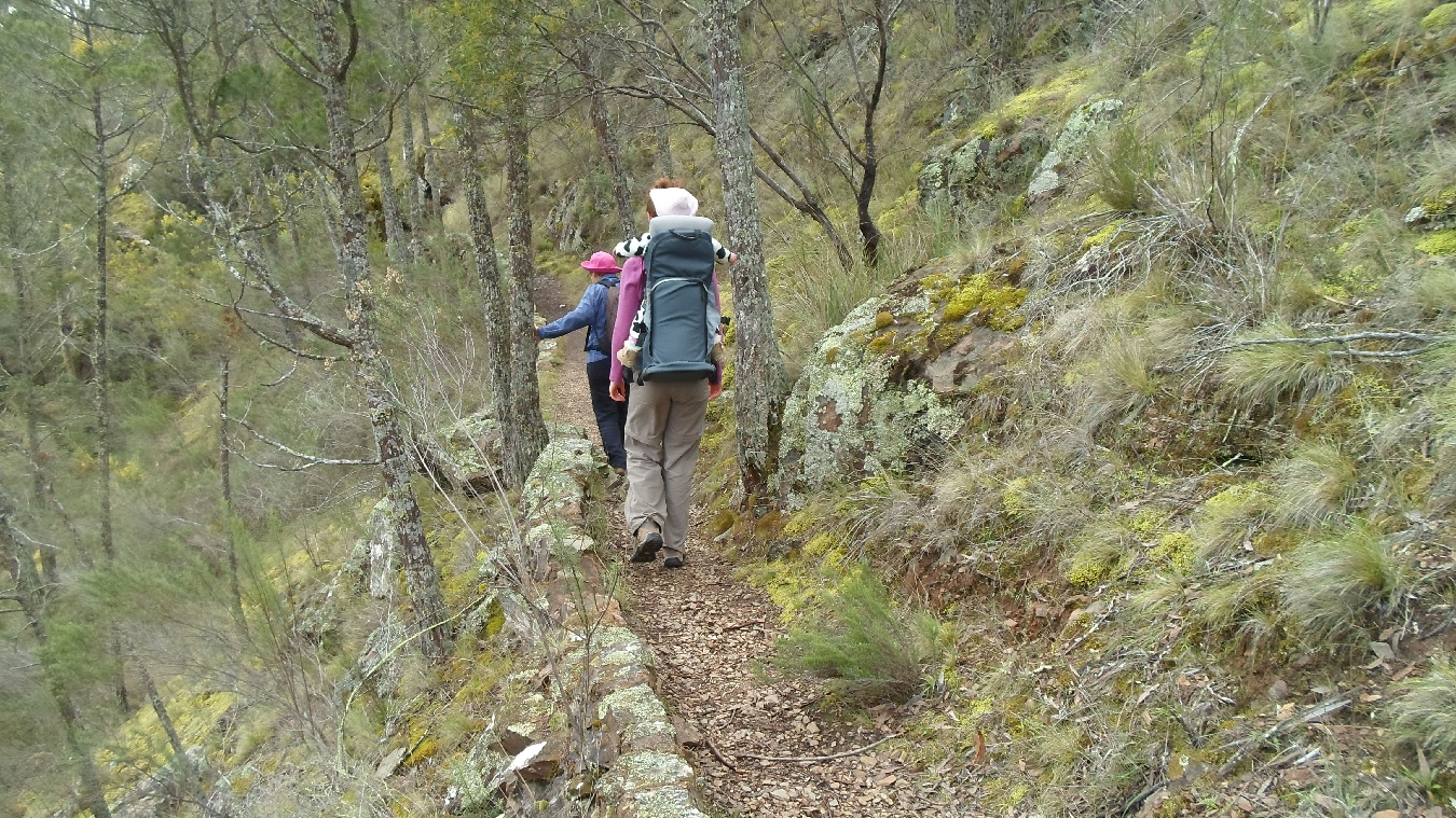 Molonglo Gorge walking track