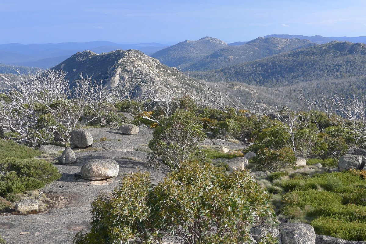 View from Mt Namadgi, by Lorraine Tomlins