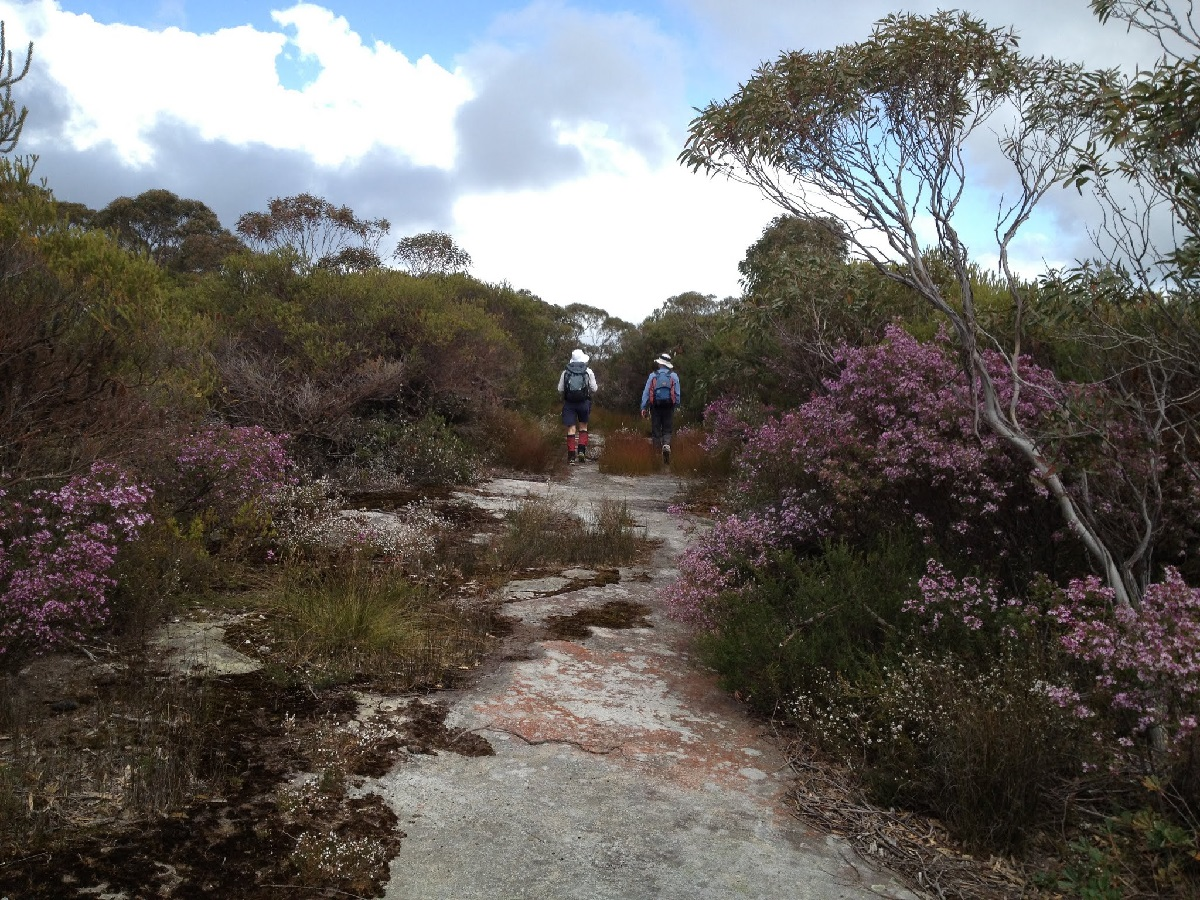 The Kangaroo Ridge Trail, BGNR, in spring, by John Evans